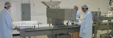 Freeze Dried Nopal Cactus (Prickly Pear) Labelling Machine